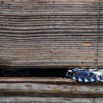 Kronkorken-Holz