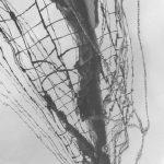 Spiegelung Mastbaum