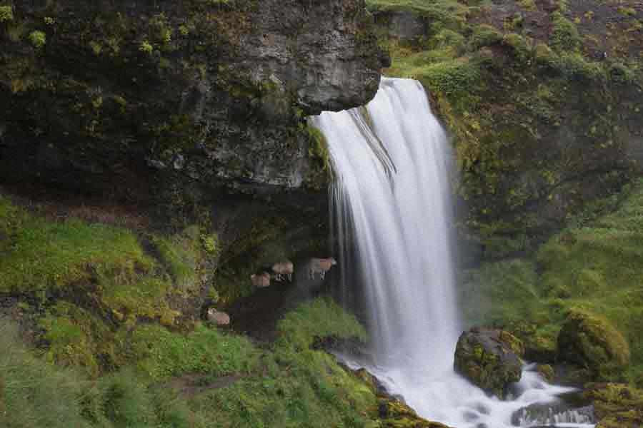 Schafswasserfall_1